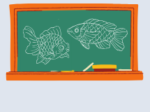 Fish Curriculum
