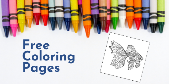 Fish Learning Fridays | Printable Coloring Pages